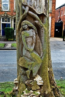 Brians Blog: TREE CARVINGS IN THE AVENUES KINGSTON UPON HULL 2009