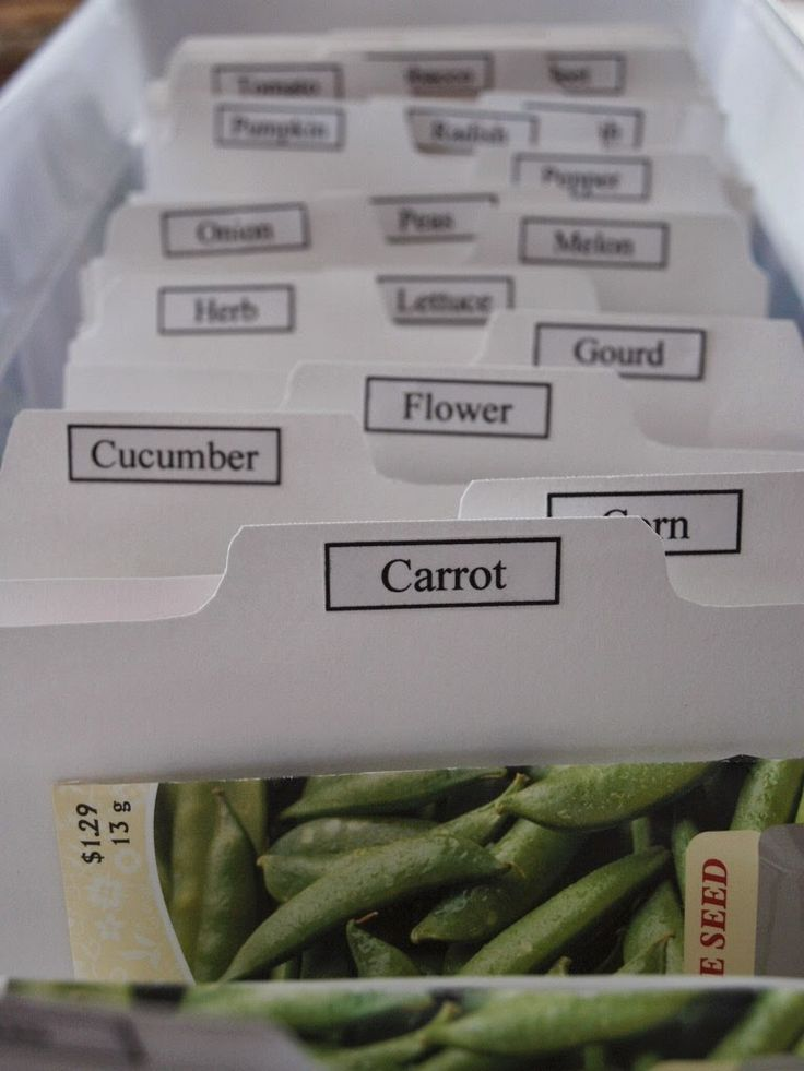 best 25  seed storage ideas on pinterest