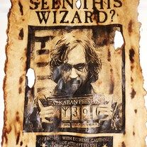 photo regarding Have You Seen This Wizard Printable identified as Incorporate On your own Found This Wizard Printable