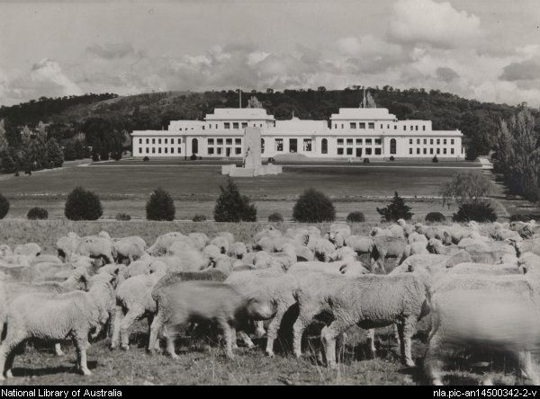 Strangman, R. C. Old Parliament House, Canberra, with sheep in foreground c1940s
