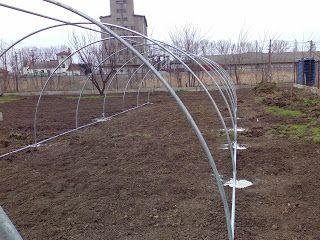 Grădinărit, horticultură și spații verzi - Gardening, horticulture and landscaping.: Construction of a Greenhouse - English