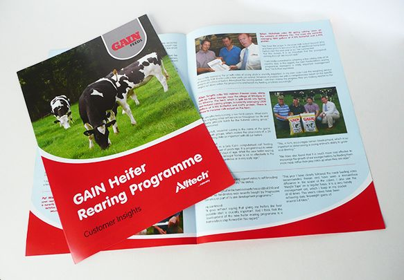 Customer insights into the Gain Heifer Rearing Programme were gathered and put into a colourful brochure to distribute amongst visitors to their stand at the National Ploughing Championships 2013. www.akgraphics.ie