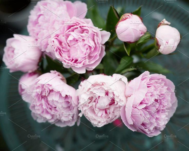 Glamorous Pink Peonies Stock Photo by RUE PARADIS STOCK on @creativemarket