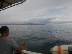 三角でタコ釣りしていますあいにくの天候ですが15匹ほど釣れました tags[熊本県]