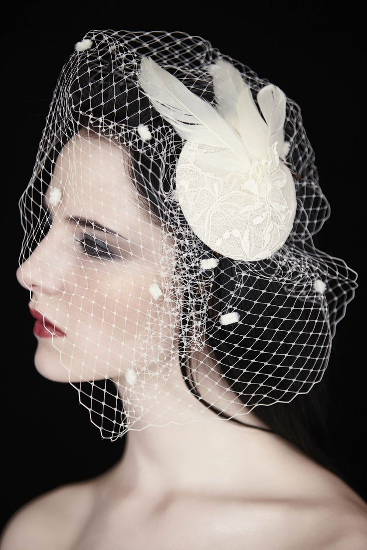 Feather and lace bird cage #bird cage veil