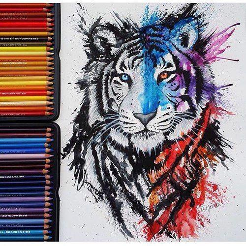 Beautiful tiger./ Hermoso tigre.