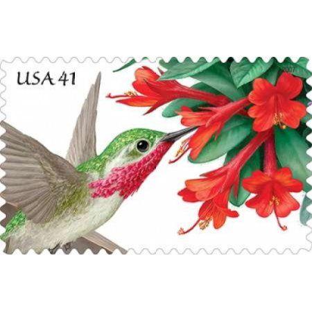 Pollination- Calliope Hummingbird With Hummingbird Trumpet Blossom Canvas Art - US Postal Service (24 x 36)