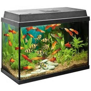 ... aquariums goldfish bowls view all juwel aquarium uk aquariums goldfish