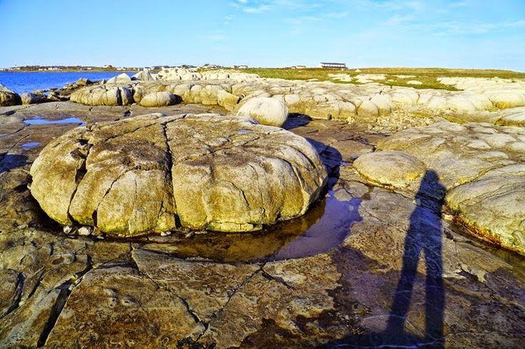 20/20:  G. Tod Slone  Eye on Newfoundland and Labrador
