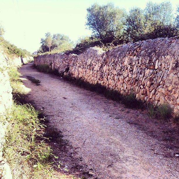 Fent la Via Augusta - Camí Ral a #ElVendrell amb l'#IEP #Penedes