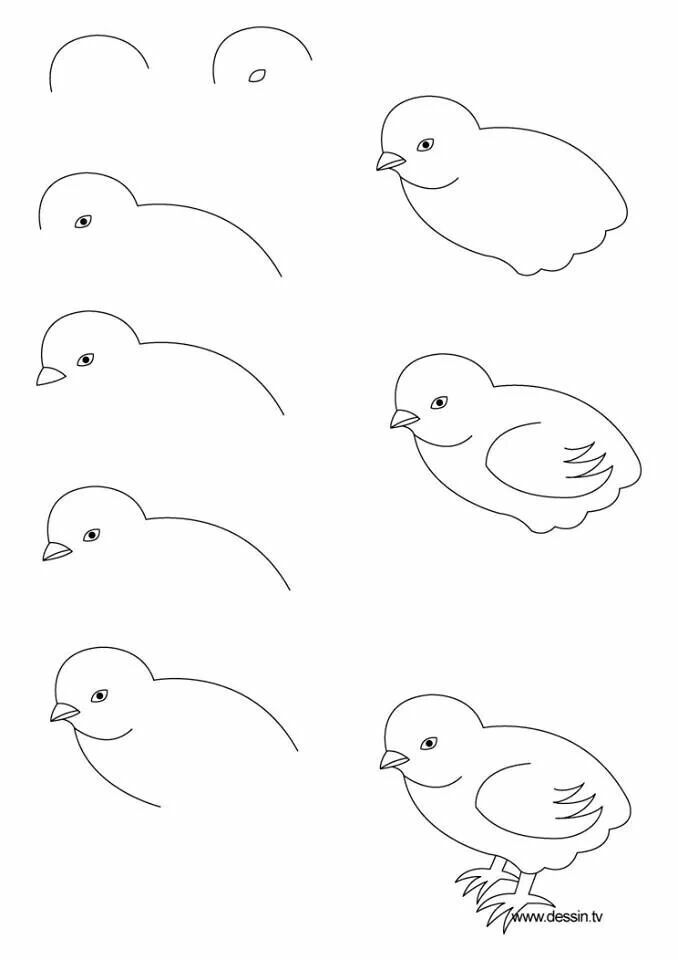 How to draw a baby chicken for your hand painted rocks.