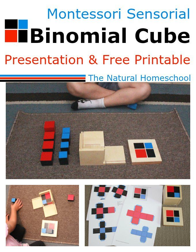 Montessori Sensorial: Binomial Cube (Free Printable!) from The Natural Homeschool
