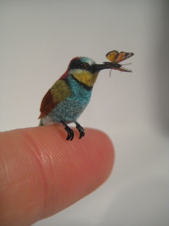 The bee-eater's body is sculpted with polymerclay, its feather is made of real feather and cotton thread. The butterfly's body is made of polymer clay, and the wings are formed in liquid clay, the legs and the antennas are made of synthetic fiber. Artist Fanni Sandor #miniature #sculpture #hummingbird
