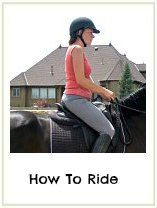 Horse Riding For Beginners - Stay Safe & Have Fun