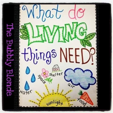 Australian Curriculum- Foundation -ACSSU002- Living things have basic needs, including food & water