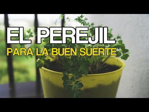 Beatriz Elena Bolivar Ortiz shared a video