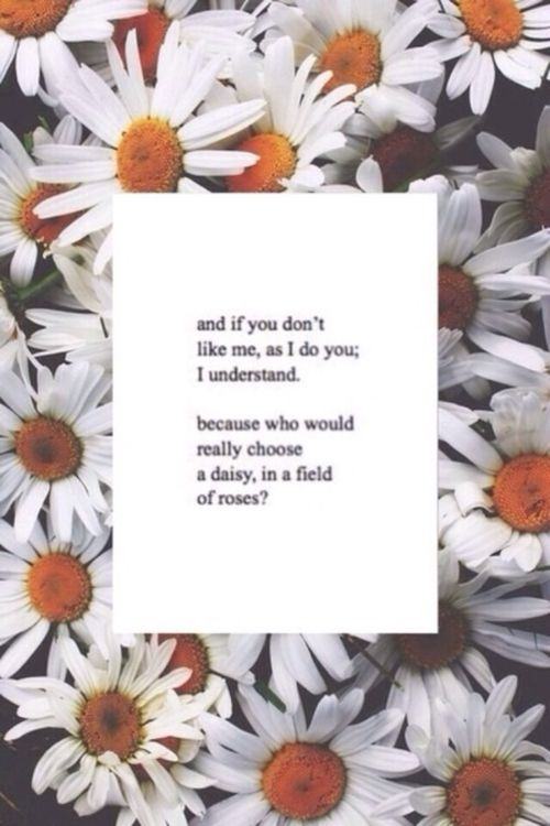 Just not good enough.. I'm a daisy in a field of roses, a weed
