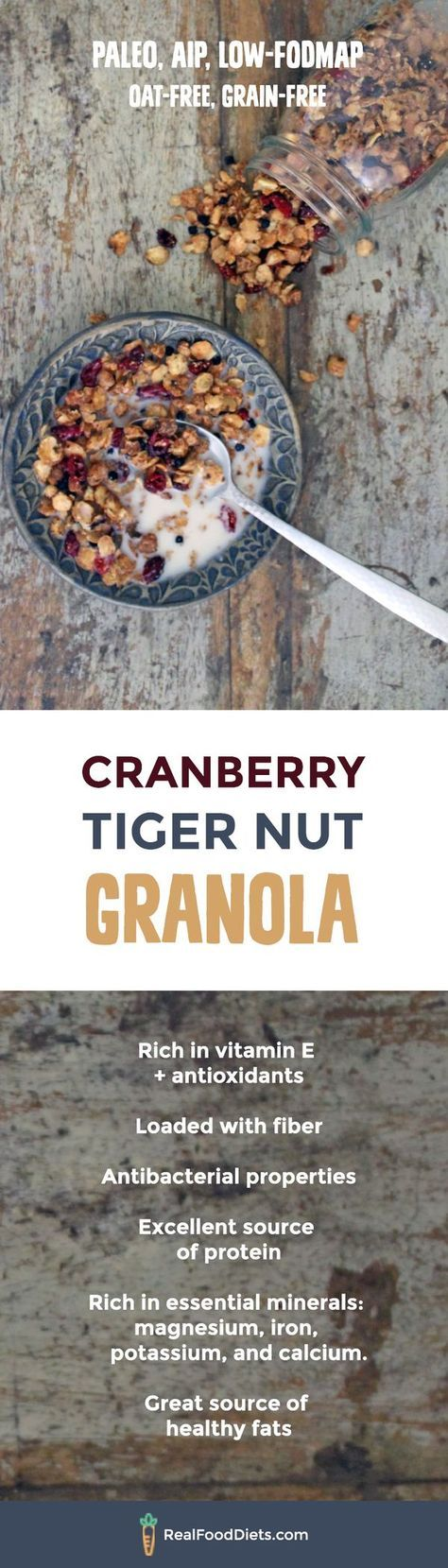 This oat free granola is sweet, crunchy, and oh so nourishing, even more so when doused in homemade tiger nut milk. You can follow the recipe to make the crunchy tiger nut base and then pretty much add in any other ingredients that take your fancy! // Safe for paleo, aip (autoimmune protocol), and low fodmap diets and is grain free and gluten free.