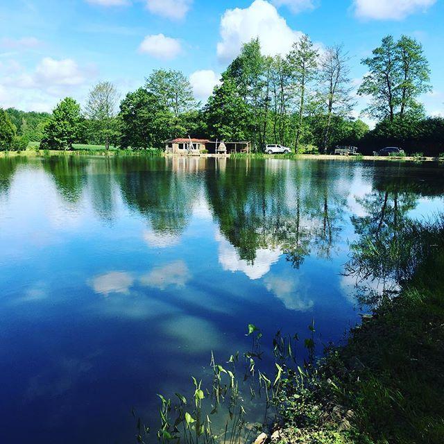 Notre étang basé à Seppois le bas - Nature & pêche -