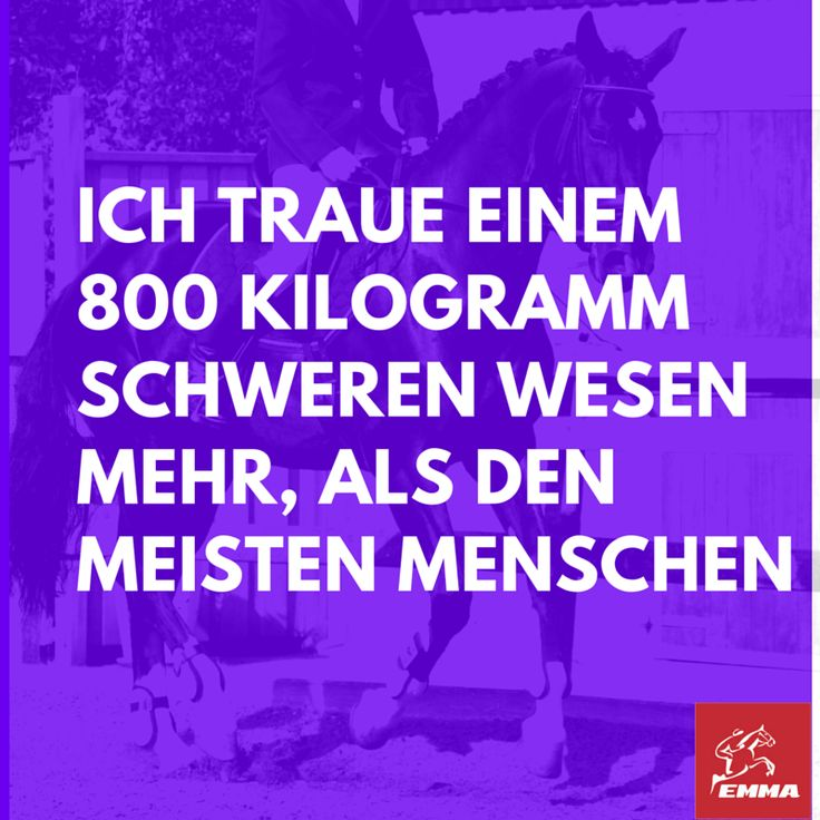 Pferdesprüche-Leinöl Pferd-emma-pferdefuttershop.de