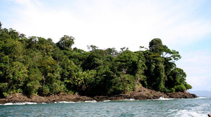 Utría National Park, Colombia