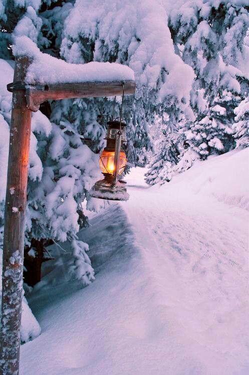 Narnia's lamp post???