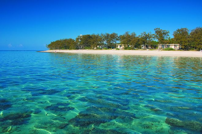Lady Elliot Island Eco Resort - Great Barrier Reef | Lady Elliot Island Eco Resort Great Barrier Reef