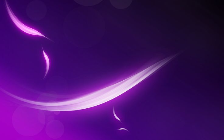 Tiger Brook - bright purple wallpaper hd pack - 2560 x 1600 px