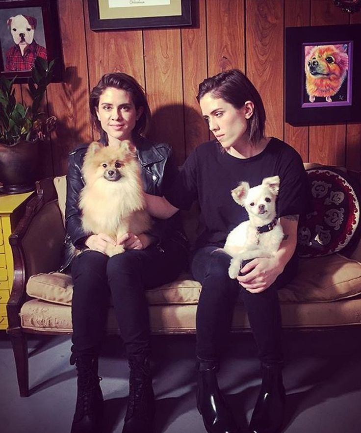 "Tegan And Sara Slow Motion Dog Video | Tegan and Sara's video for ""100X"" features dogs being blowdried in slow-motion. #refinery29 http://www.refinery29.com/2016/05/110232/tegan-and-sara-100x-video"