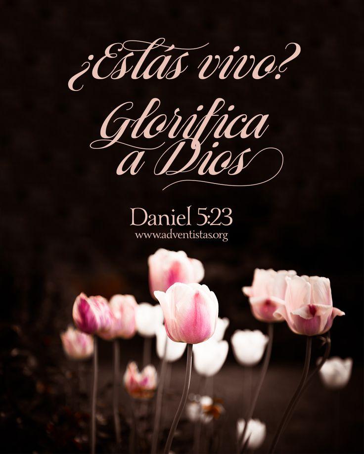 #rpsp #Biblia #lectura #diaria #Daniel