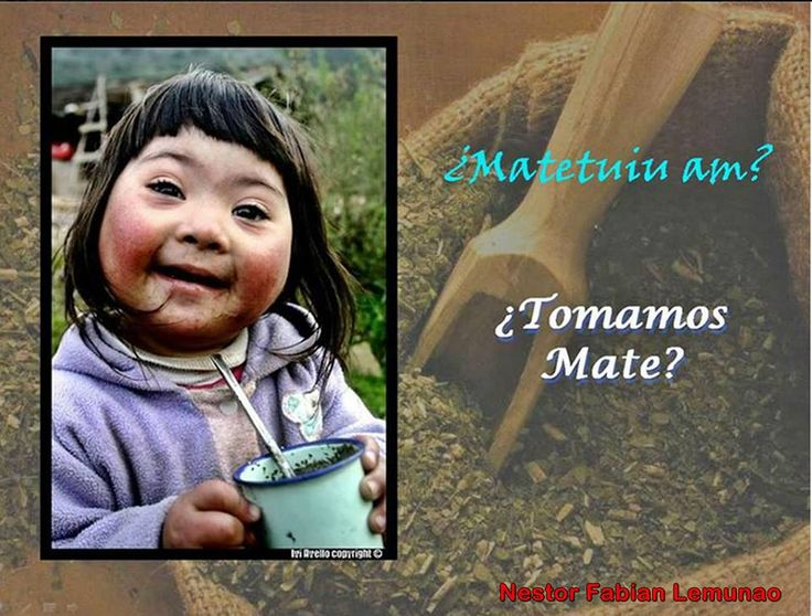 There's a traditional hot drink in few countries of South America - specially in Argentina and Uruguay- called MATE. Here , some phrases in MAPUDUNGUN ( the language of Mapuches, to share MATE with them:   -Matetuimi? (Do you drink mate?) -MATETUIU AM? (Shall we drink some mate?- 2 people) -FURRE MATE AM? (Bitter mate? )  -COCHI MATE AM? (Sweet Mate? ) -GUASHQUELI CO!! ( Boiled water ready!) -NIEGUE LAI CO (Water ran out) -CUMELI TAMI MATE (Your Mate is tasty! )