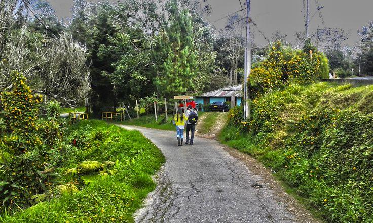 Caminando entre veredas y bosques en el corregimiento de Santa Elena, Medellin