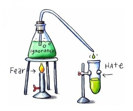 Politics, Ignored, Inspiration, Hate, Stuff, Quotes, Truths, True, Fear