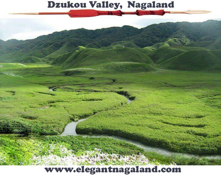 Breath taking Dzukou Valley in Nagaland