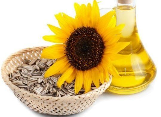 Some of the health benefits of sunflower oil include its ability to improve heart health, boost energy, strengthen the immune system, improve your skin health, prevent cancer, lower cholesterol, protect against asthma, and reduce inflammation.