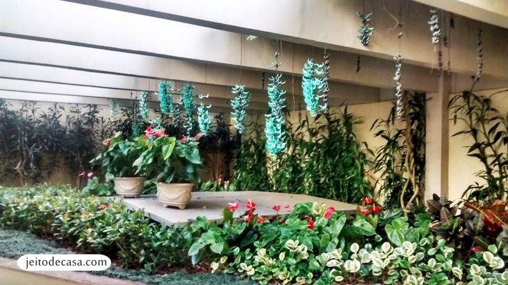 flor azul jardim secreto:br quintal di casa trepadeira jade más casa flores plantas flores eh