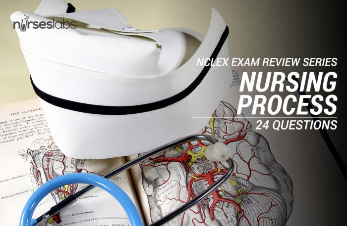 A 24-item NCLEX style exam all about the ADPIE or the Nursing Process.