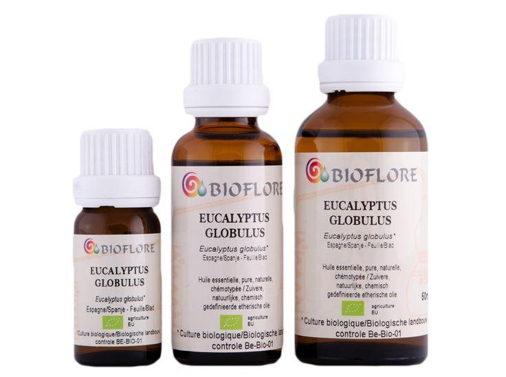 Bioflore - Boutique en ligne - HUILES ESSENTIELLES - Eucalyptus Globulus bio Certisys