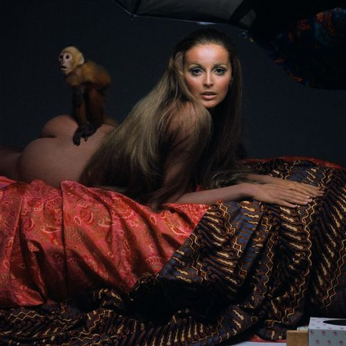 Supermodel Samantha Jones with a monkey perched on her derriere