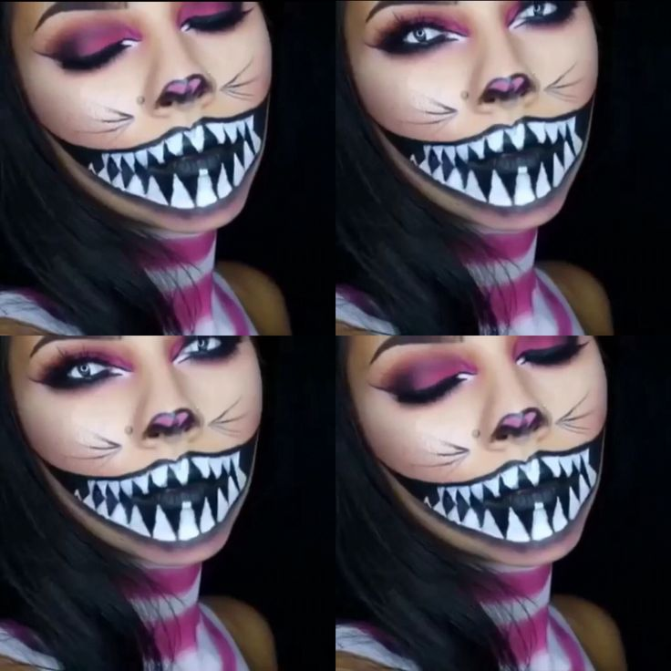 Cheshire Cat Makeup                                                                                                                                                     More