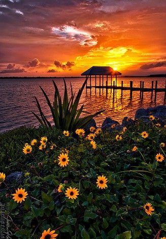 Sunset over Hutchinson Island    nature     sunrise      sunset   #nature  https://biopop.com/