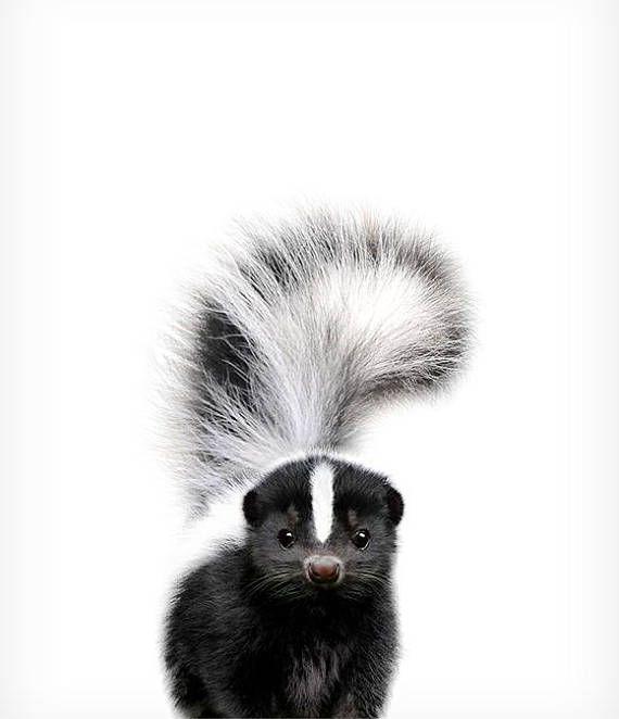 Baby skunk print, Nursery animal prints, The Crown Prints, Nursery wall decor, Unique nursery decor, Woodland animal prints, Baby room art