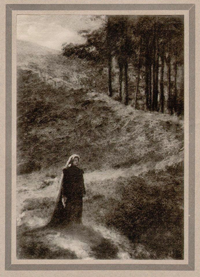 Le Prince Lointain: Robert Demachy (1859-1936), Dans Les Sapins.