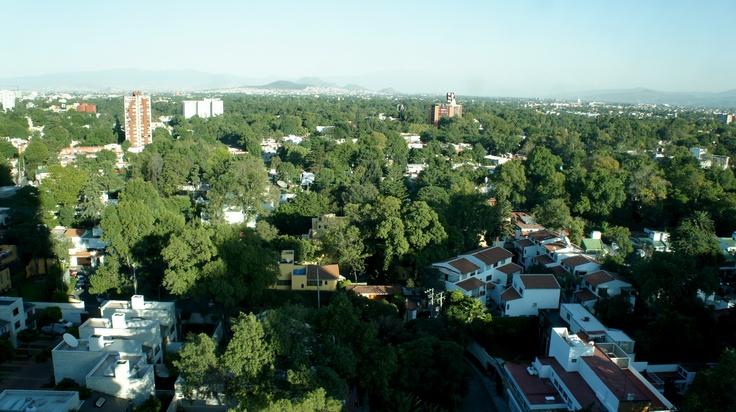 Regus Siglum, Mexico City