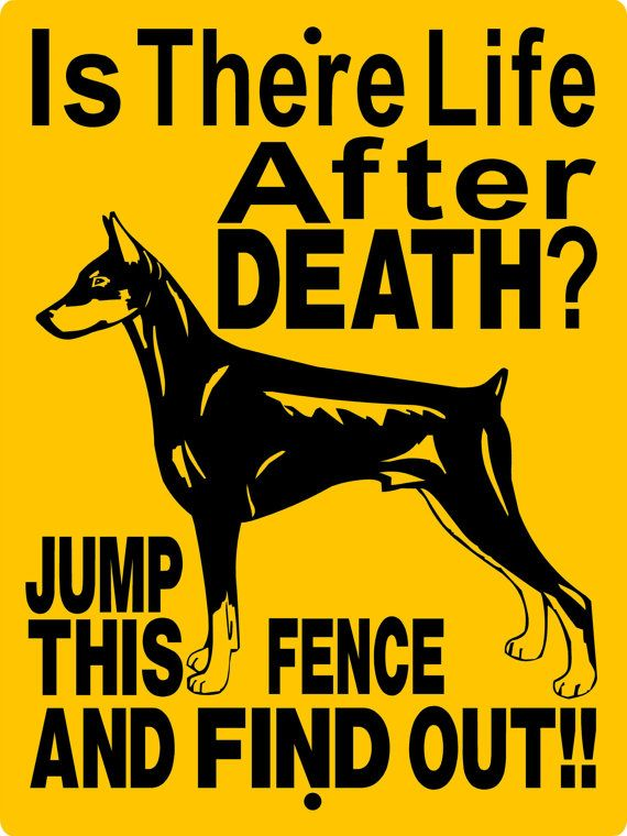 Doberman Pinscher Dog Sign 9x12 ALUMINUM by animalzrule on Etsy, $12.00