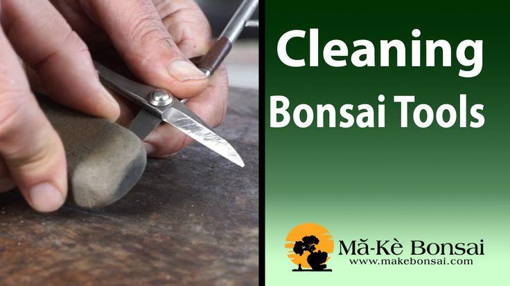 86) Basic Bonsai Tools Care - Bonsai Trees for Beginners Series