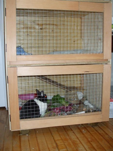 how to build indoor bunny cage