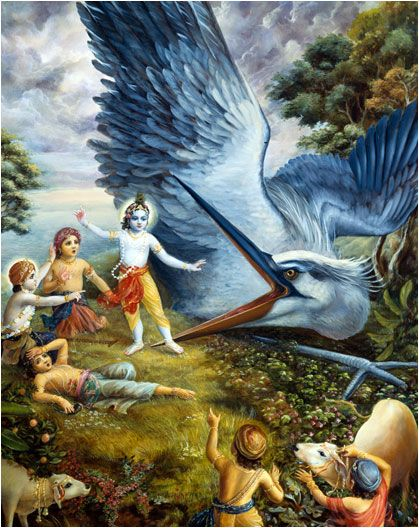 Ch.11: Bakāsura appeared & attacked Krṣṇa with his pointed, sharp beaks & quickly swallowed Him up. But when the Bakāsura demon was swallowing up Krṣṇa, he felt a burning fiery sensation in his throat. The demon quickly threw Krṣṇa up and tried to kill Him by pinching Him in his beaks. Krishna caught hold of the beaks of the great gigantic duck and, bifurcated his mouth, just as a child very easily splits a blade of grass.