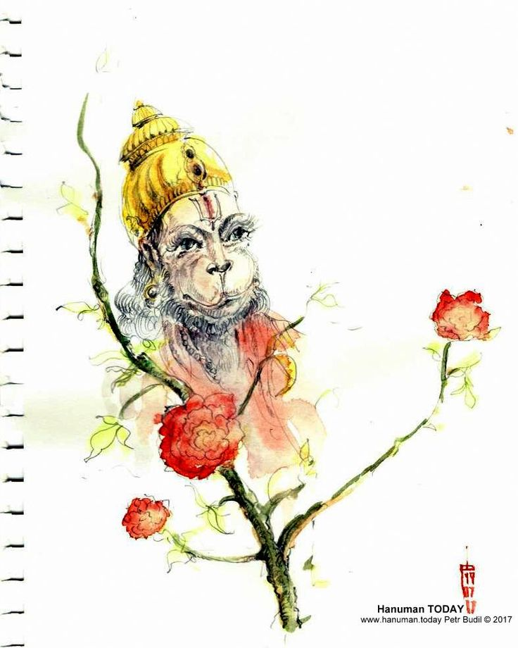 Wednesday, July 19, 2017  http://www.hanuman.today/product/july-19-2017/