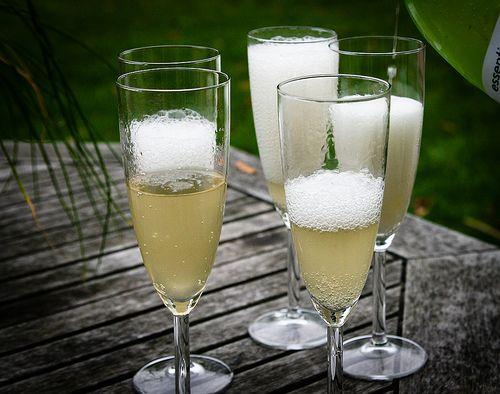 Elderflower Champagne (recipe)